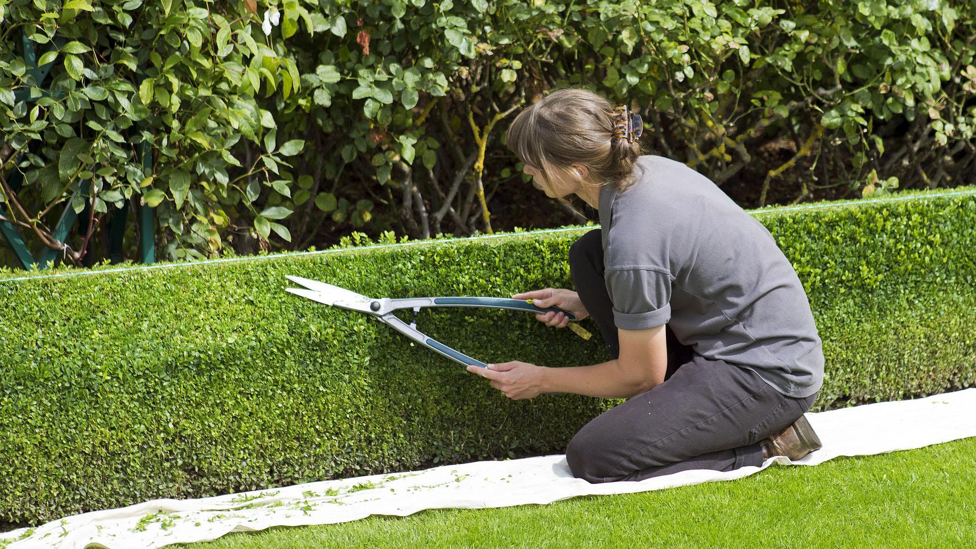 female landscaper