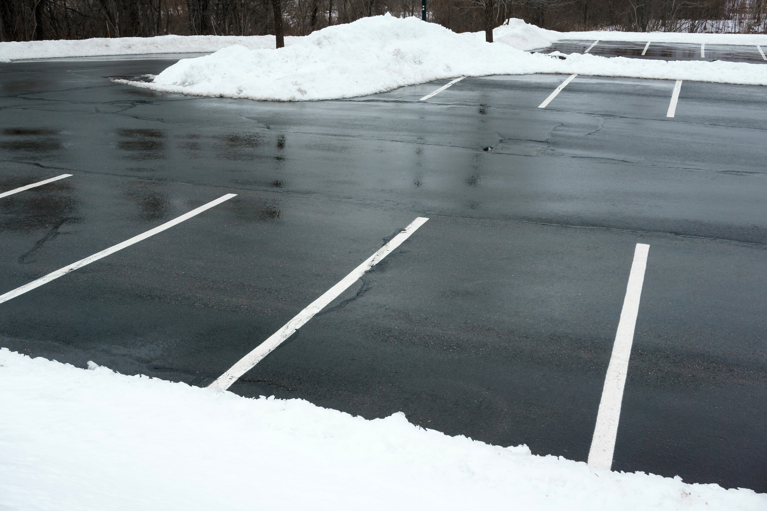 Snow Removal Service Cost: Is the Price Right for Your Business?